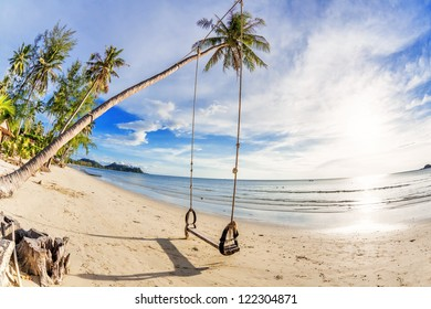 Swings and palm on the sand tropical beach. Fisheye look