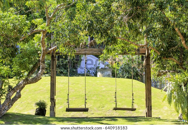 Swings Under Trees Stock Image Download Now
