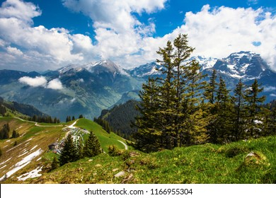 swiss alps mountains  spring landscape