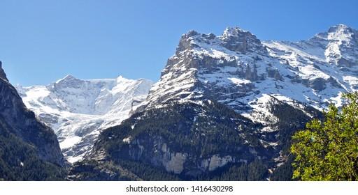 swiss alps Peak near Grindelwald,switzerland, spring season