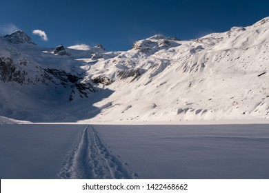 Swiss Alps in Winter Scenery Graubünden Pontresina snow showeing hiking cross country skiing on sunny day