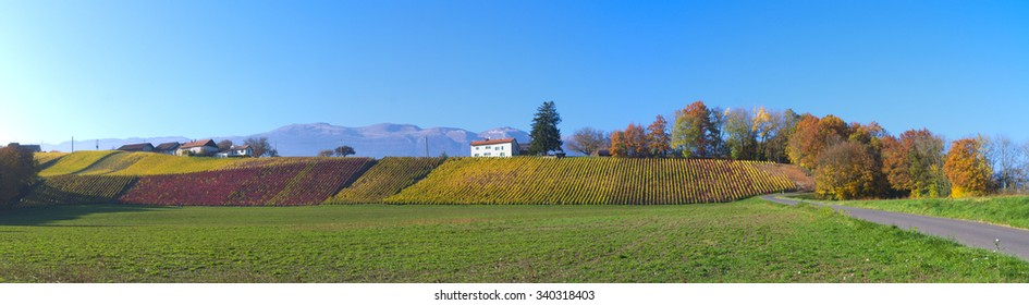 Swiss countryside panoramic landscape
