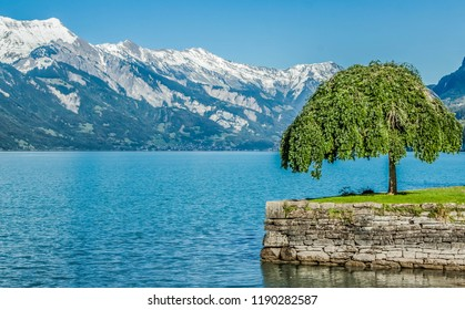 Swiss mountains, lake, sky and tree landscape
