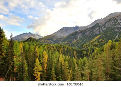 Swiss National Park in the autumn