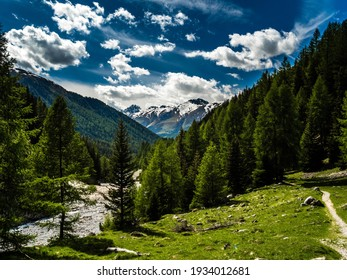 Swiss National Park, Graubuenden, Engadin, Switzerland, Val Trumpchun