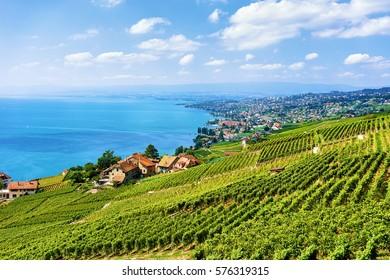 Swiss village near Lavaux Vineyard Terraces hiking trail, Lake Geneva and Swiss mountains, Lavaux-Oron district in Switzerland