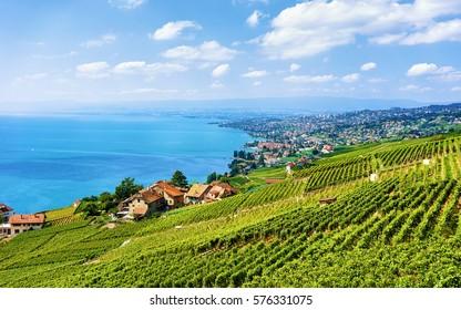 Swiss village near Lavaux Vineyard Terraces hiking trail, Lake Geneva and Swiss mountains, Lavaux-Oron district, Switzerland