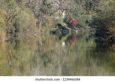 In the Swiss village of Saint-Ursanne, a reflection of the autumn colors in the Doubs river