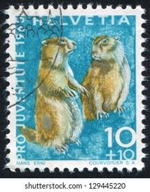 SWITZERLAND - CIRCA 1965: stamp printed by Switzerland, shows Alpine marmots, circa 1965