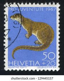 SWITZERLAND - CIRCA 1967: stamp printed by Switzerland, shows Otter, circa 1967