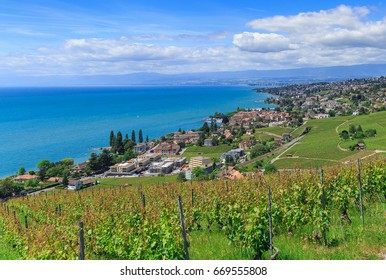 Switzerland, Lutry village, view on part of Lausanne city, lake Leman, vineyard and beautiful blue sky.