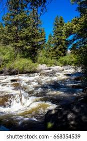 Swollen, rushing Mill Creek in June, Rocky Mountain National Park
