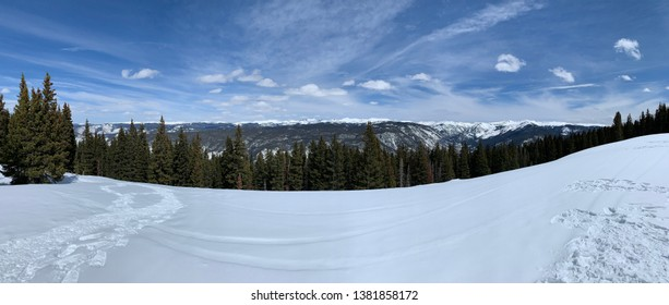 Swow covered ski resort with pine trees and blue sky