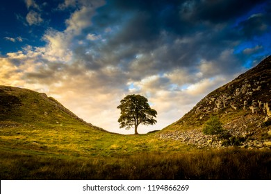 Sycamore gap light clouds