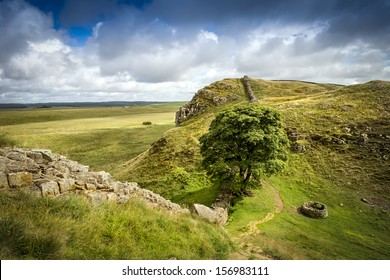 Sycamore Gap on Hadrians wall in northumberland.This iconic tree was used as a location in the film Robin Hood Prince of thieves, and is a notable point in the midst of Hadrians Wall.