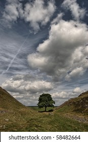Sycamore Gap on Hadrian's wall in the Northumberland National Park