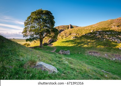 Sycamore Gap on Hadrian's Wall / Hadrian's Wall is a World Heritage Site in the beautiful Northumberland National Park. Popular with walkers along the Hadrian's Wall Path and Pennine Way