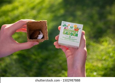Sydney / Australia 11-09-2019 Hanвы holding Discovery Garden Woolworths promotion boxes.24 vegetable, herb and flower seeds. Every kit contains seed paper, pot, pop-out see name tag, soil pellet