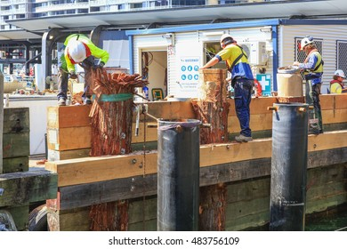 SYDNEY, AUSTRALIA : 9 SEPTEMBER 2016 - Unindentified men working at Darling Harbour Ferry services, Sydney, New South Wales