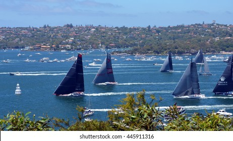 Sydney, Australia - December 26, 2014. Right after the start Comanche is leading. The Sydney to Hobart Yacht Race is an annual event, starting in Sydney on Boxing Day and finishing in Hobart.