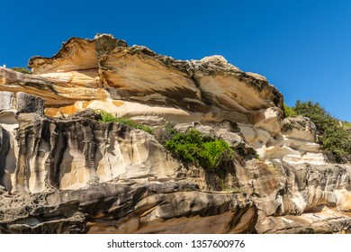 Sydney, Australia - February 11, 2019: Oyster Shell like rock formation made by erosion on South shore cliffs overlooking Bronte Beach under blue sky. Some green vegetation on side. yellows and browns