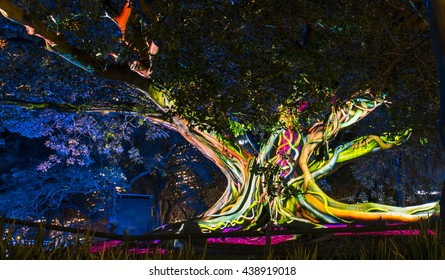 Sydney, Australia - June  10, 2016: 3D mapped projection show on a heritage listed Moreton Bay Fig Tree as part of the Vivid Sydney festival.