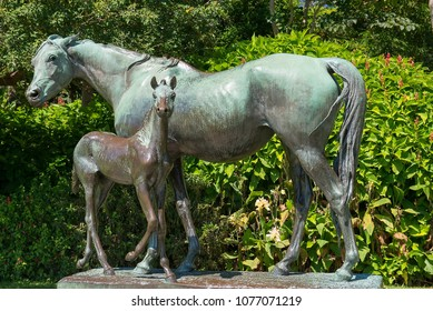 Sydney, Australia - March 11, 2018: 'Mare and Foal' is a bronze statue mare (La Reyna) and her foal by french artist, Arthur J. le Duc, purchased in 1891, and donated to the Royal Botanic Gardens