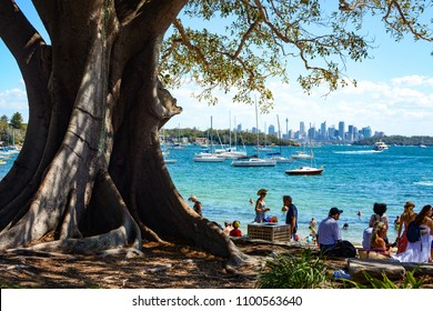 SYDNEY, AUSTRALIA - MARCH 18, 2018 - Friends and families relax under the shade of a huge tree in Robertson Park at Watson's Bay