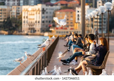 Sydney, Australia - May 9, 2019: Seagulls standing and flying around in front of people at Sydney Harbour.
