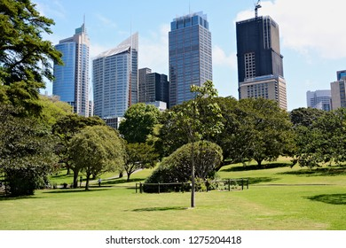 Sydney, Australia; October 26th 2018 - View on business centre with skyscrappers. City park in Sydney