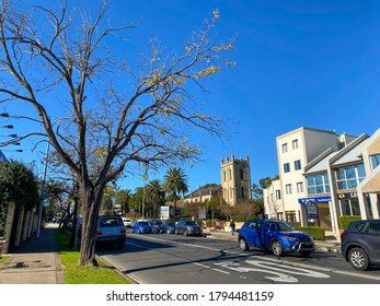 SYDNEY, AUSTRALIA. – On June 25, 2020. – A beautiful winter tree in Penrith, is a suburb in New South Wales, Australia, located west of Sydney.