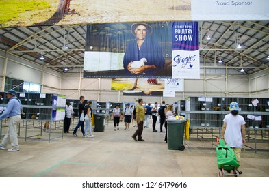 SYDNEY, AUSTRALIA. - On March 31, 2013 - A poultry show is a specific subset of a livestock show that involves the exhibition at Sydney Easter show.