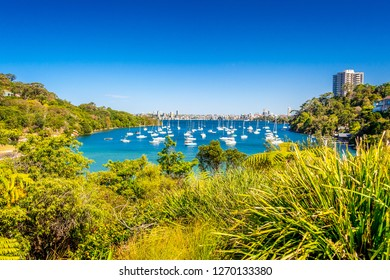 Sydney, Australia. Sep 13th 2017. Sirius Cove is a quiet location where many small yachts and boats are moored in Sydney Harbour, Australia.