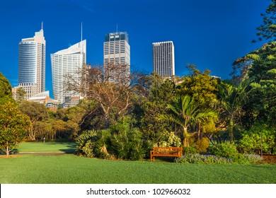 Sydney botanical gardens with highrises behind, Australia