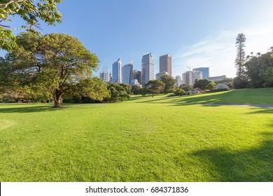 Stadtgebäude von Sydney und Park