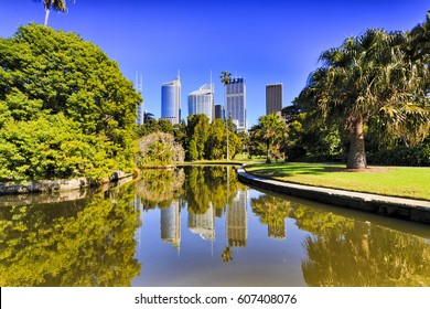 Sydney city Royal Botanic garden pond reflecting CBD skyscrapers surrounded by green exotic trees