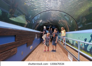 SYDNEY - FEB 21 2019:Visitors looking at fish in Sea Life Aquarium in Sydney New South Wales Australia displaying more than 700 species and 13,000 individual fish and other sea and water creature