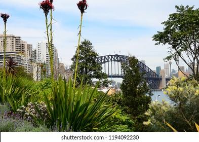 Sydney Harbour Bridge viewed from Lavender Bay