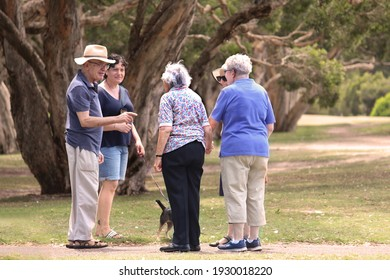 Sydney, NSW  Australia - February 25 2020: Elderly people in a park chatting while the are getting walking exercise and fresh air. Trees in the background