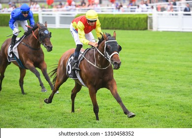 Sydney, NSW, Australia - January 26, 2019: Jockey Hugh Bowman rides New Universe to victory in race 9, the Rise Up At The Championships Handicap, at the Royal Randwick Racecourse.