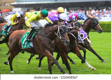Sydney, NSW, Australia - January 26, 2019: Jockey Jason Collett (green helmet) rides Brazen to victory in race 8, the #Theraces Handicap, at the Royal Randwick Racecourse.