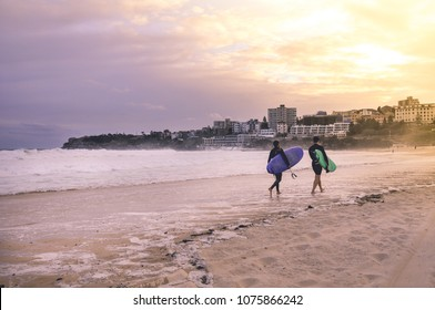 Sydney, NSW/Australia: Surfers leaving Bondi beach in the evening