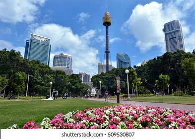 SYDNEY - OCT 20 2016:General landscape view of Hyde Park, the oldest public parkland in Australia located in Sydney New South Wales Australia. It is the oldest public parkland in Australia.