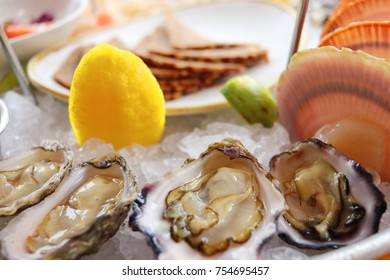 Sydney Pacific oysters on seafood platter