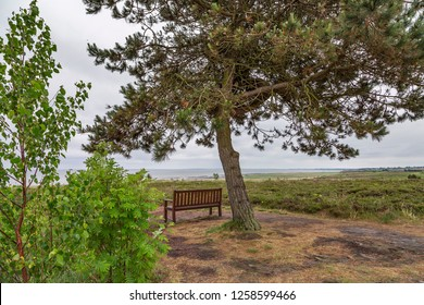 Sylt - View to a bench at Sylt Braderup with View to the Wadden-Sea, Schleswig-Holstein, Germany, Sylt, 10.06.2018