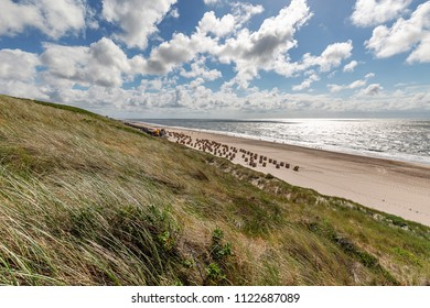Sylt - View from Dunes to Wenningstedt Beach at late afternoon, Schleswig-Holstein, Germany, Sylt, 13.06.2018