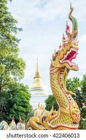 The Symbol in Buddha