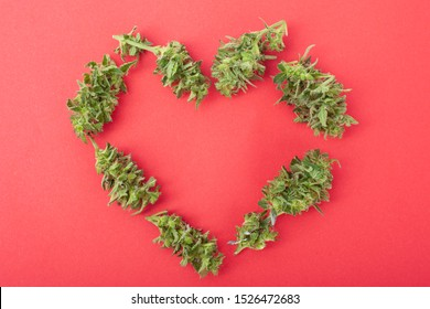 symbol of love from cannabis buds, heart made of marijuana on a coral color background.