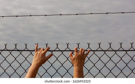 symbol of oppression barbed wire fence