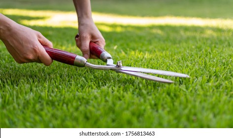 Symbol for perfection. A worker is using a hedge trimmer to cut the grass.